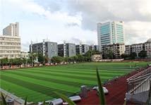 人工草足球场