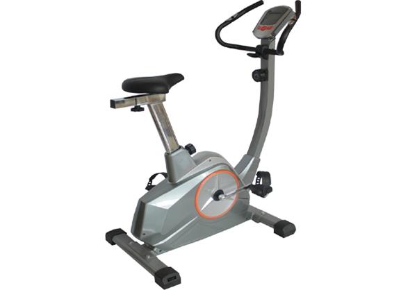 LY -B517 高档磁控健身车