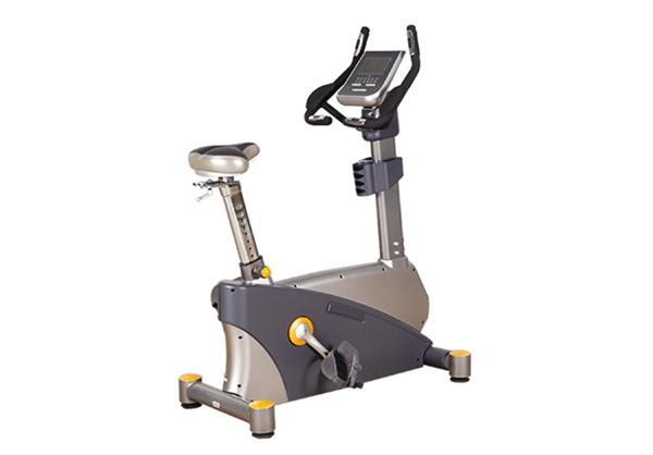 LY -B331豪华立式健身车